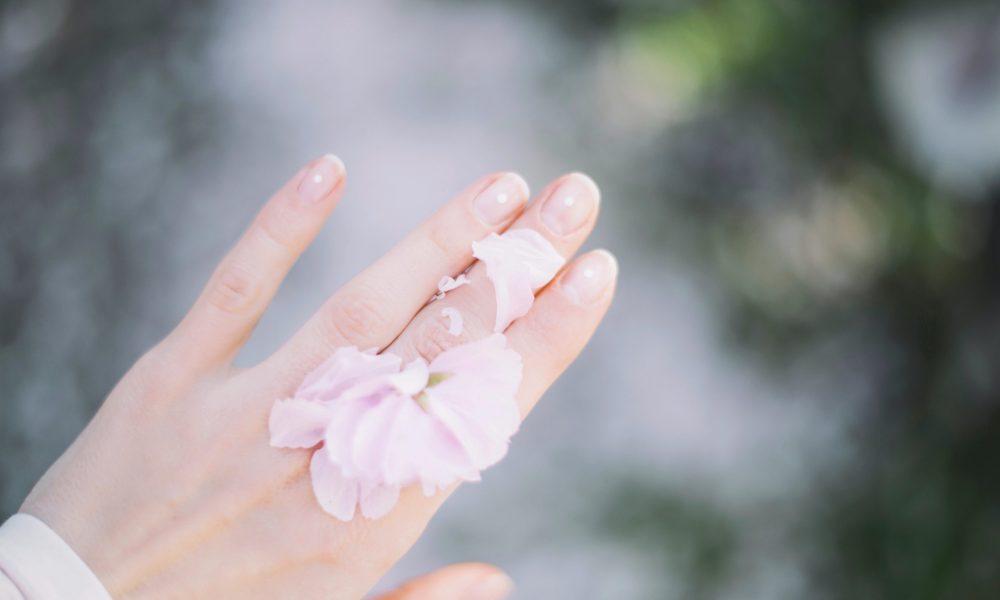 alsterHS_kozmetika (6)